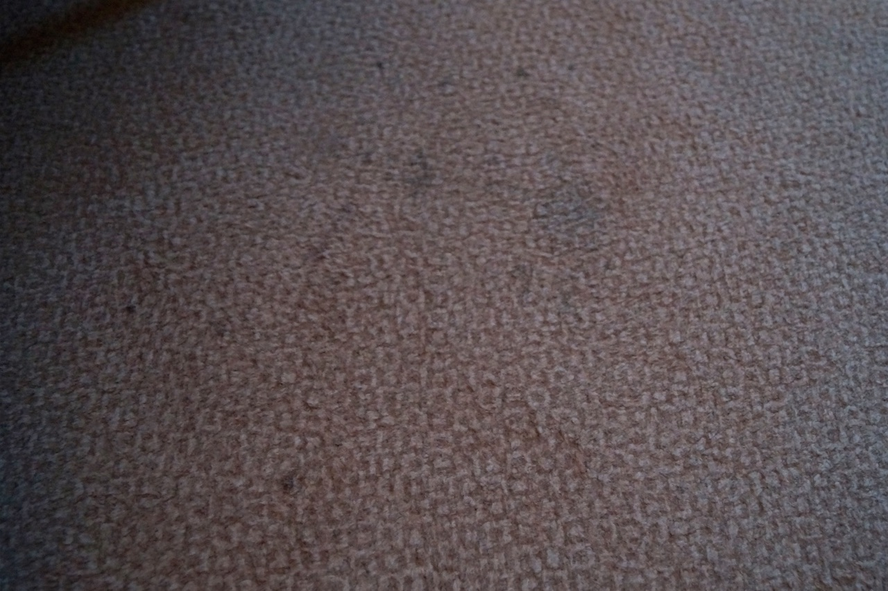 Hilton London Gatwick Airport Hotel Bedroom Carpet Stains
